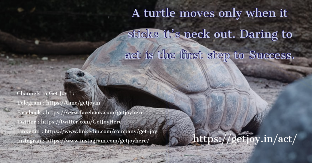 A turtle moves only when it sticks it's neck out. Daring to act is the first step to Success