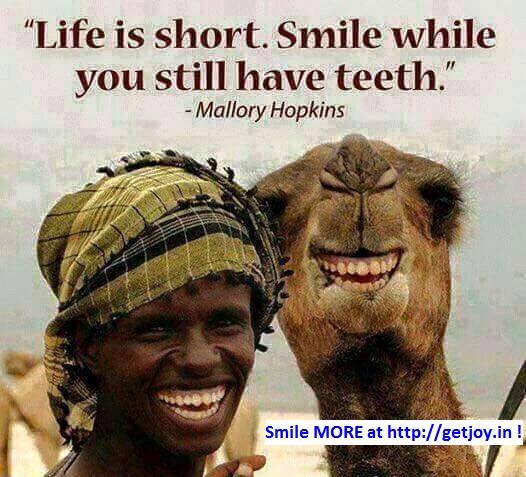 SmileWhileYouStillHaveTeeth